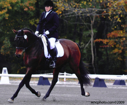 Angie on Wiesling - Hannoverian mare